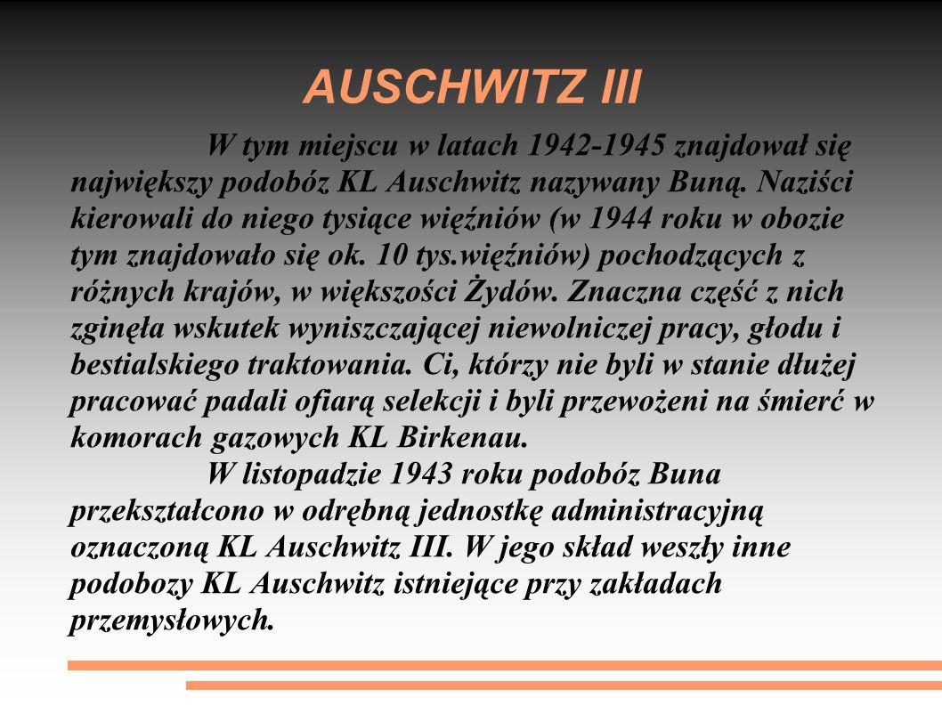 AUSCHWITZ III