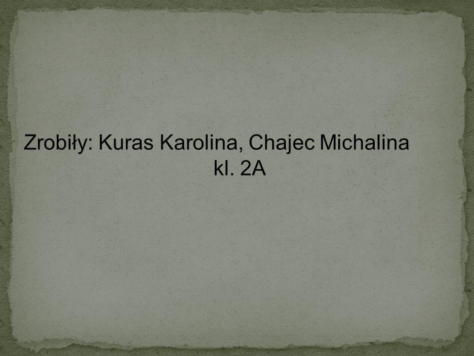 Zrobiły: Kuras Karolina, Chajec Michalina