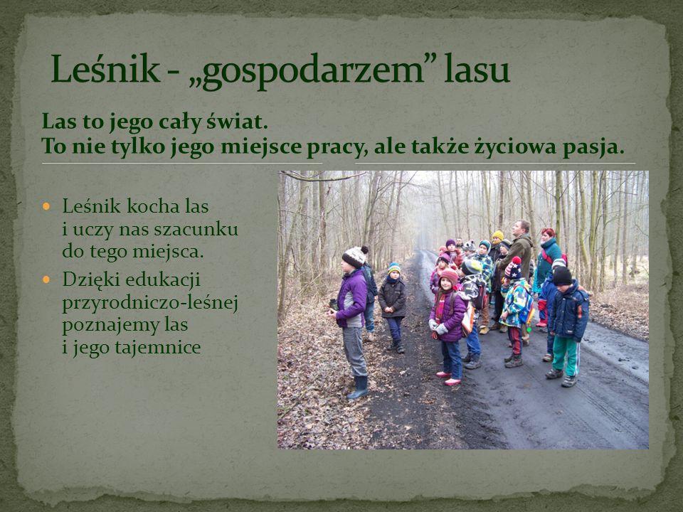 """Leśnik - """"gospodarzem lasu"""