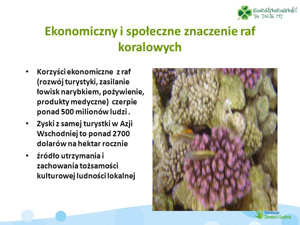 Ekonomiczny i społeczne znaczenie raf koralowych