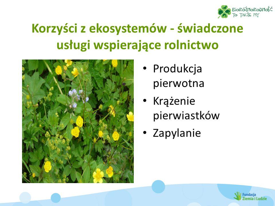 Korzyści z ekosystemów - świadczone usługi wspierające rolnictwo