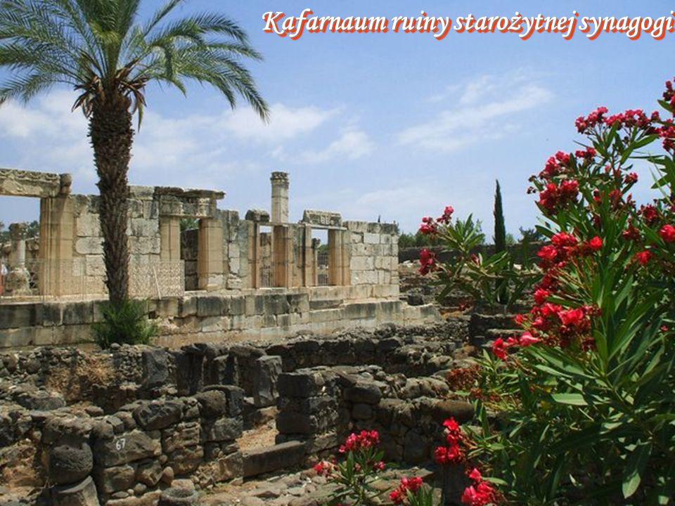 Kafarnaum ruiny starożytnej synagogi
