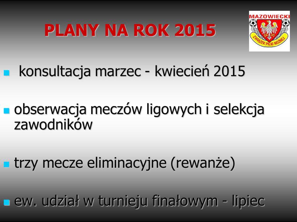 PLANY NA ROK 2015 konsultacja marzec - kwiecień 2015