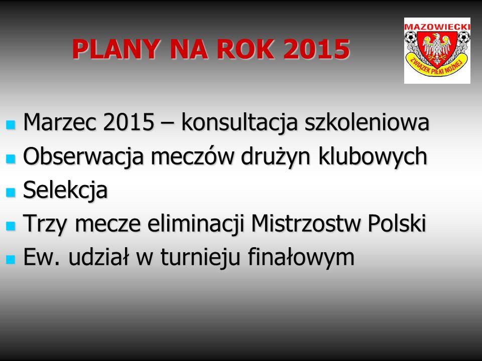 PLANY NA ROK 2015 Marzec 2015 – konsultacja szkoleniowa