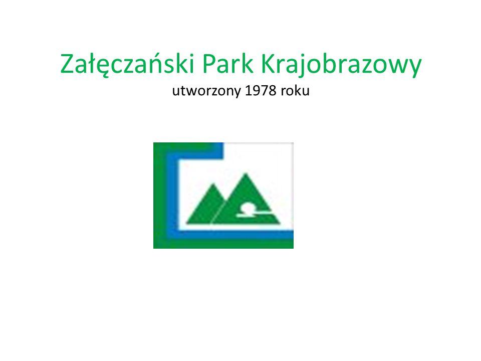 Załęczański Park Krajobrazowy utworzony 1978 roku