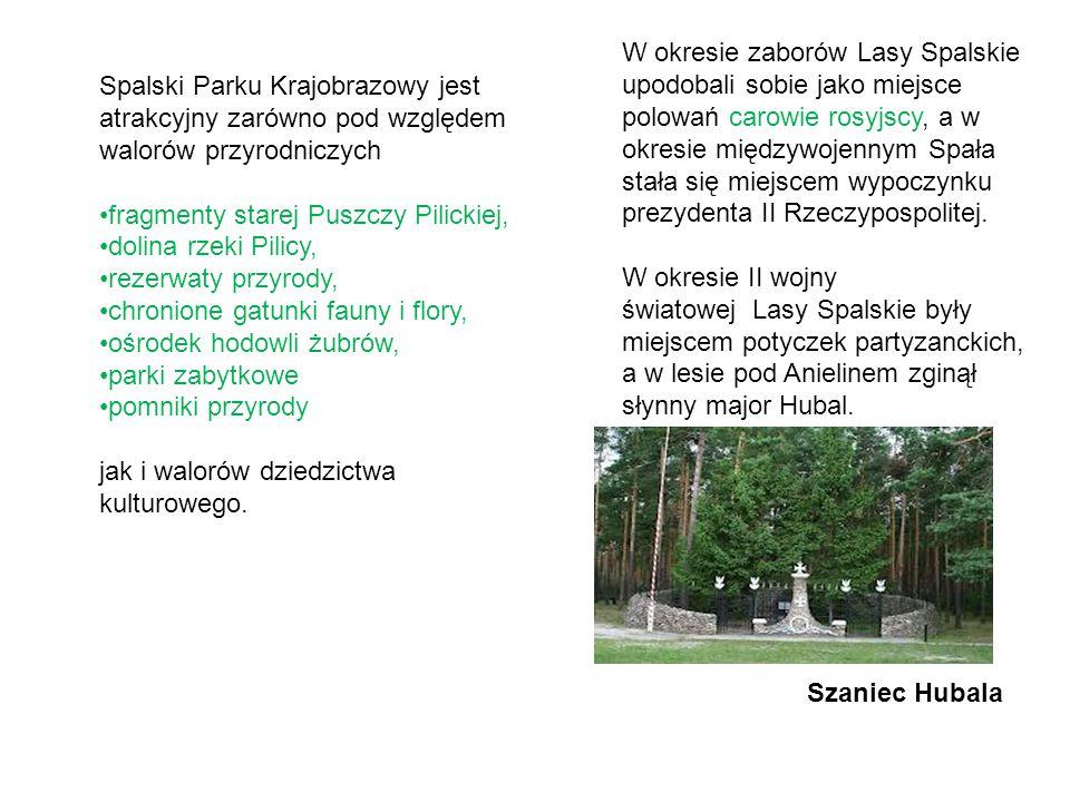W okresie zaborów Lasy Spalskie upodobali sobie jako miejsce polowań carowie rosyjscy, a w okresie międzywojennym Spała stała się miejscem wypoczynku prezydenta II Rzeczypospolitej.