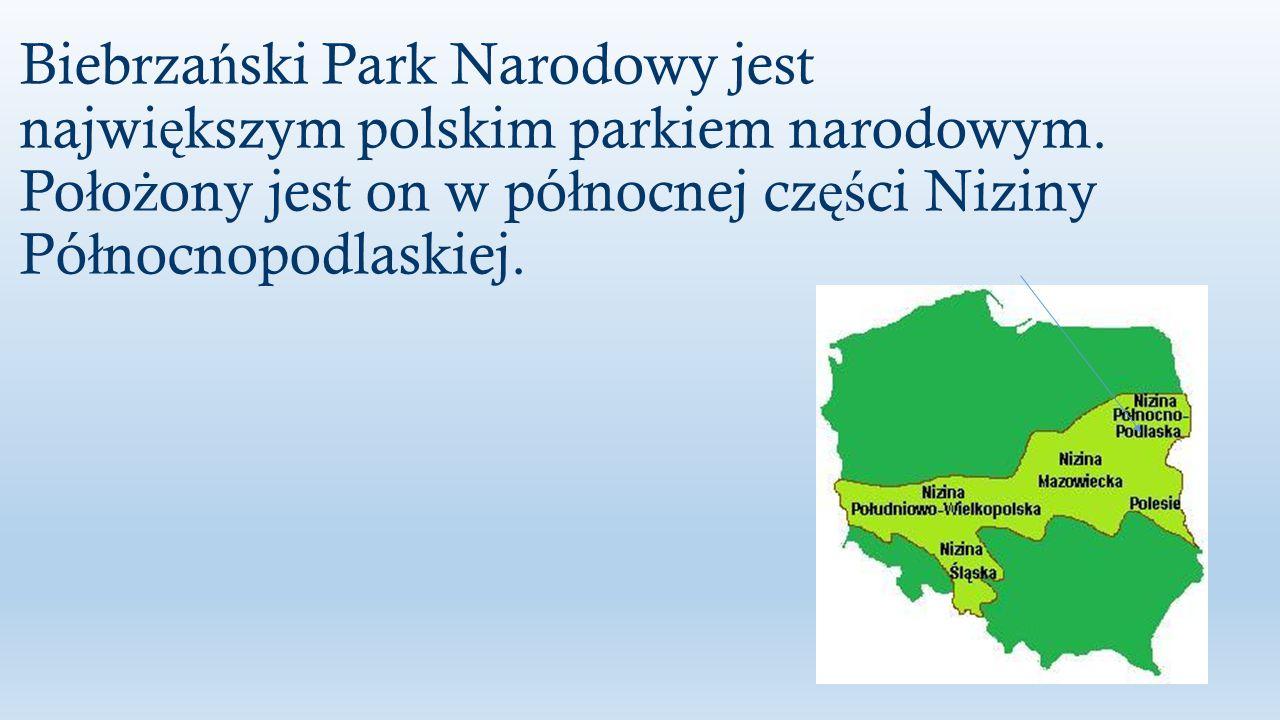 Biebrzański Park Narodowy jest największym polskim parkiem narodowym