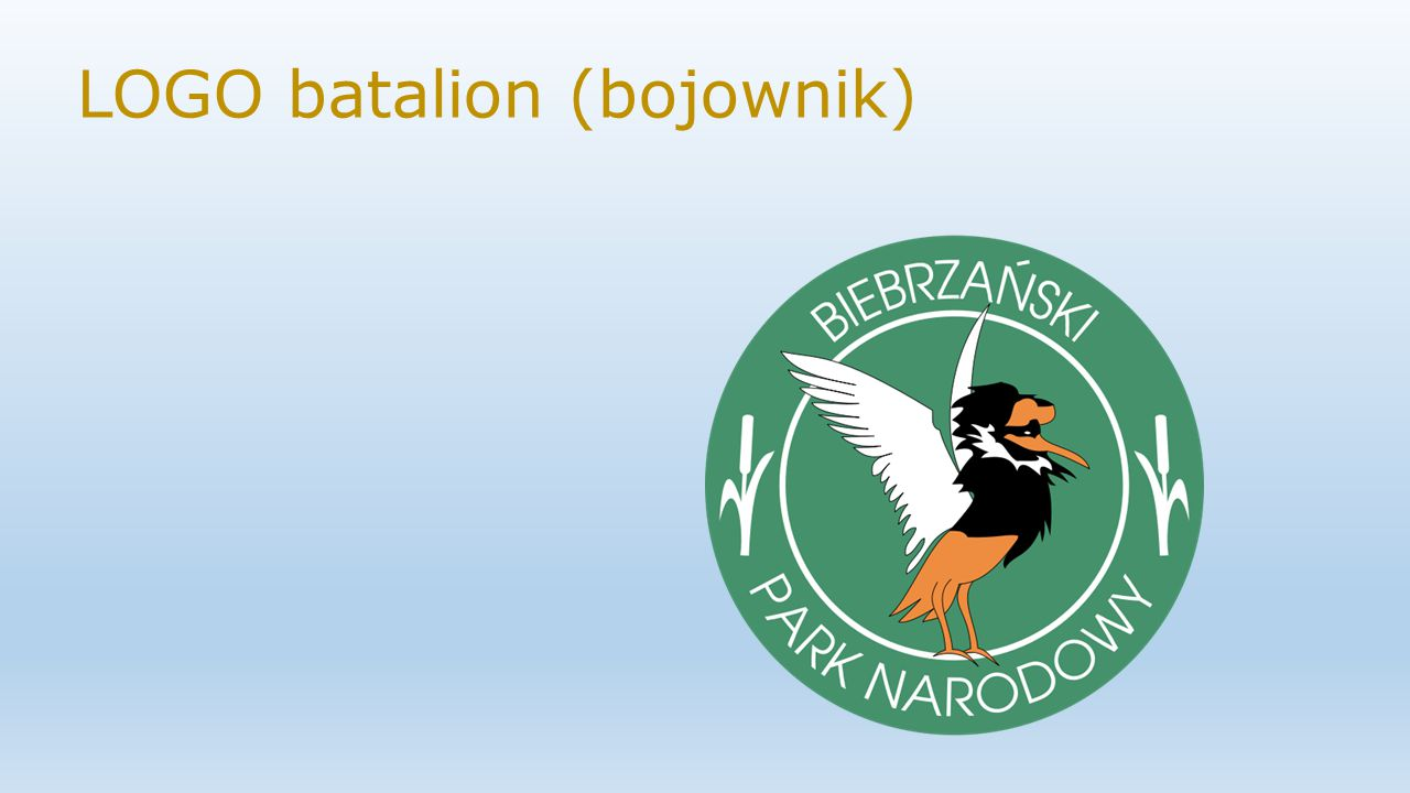 LOGO batalion (bojownik)