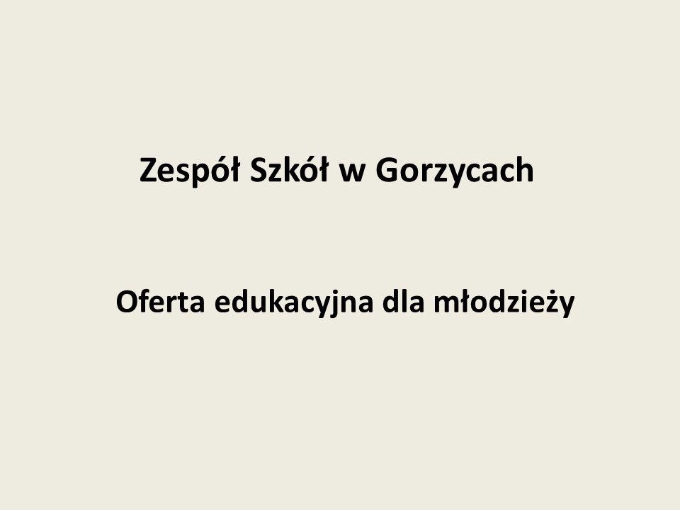 Oferta edukacyjna dla młodzieży