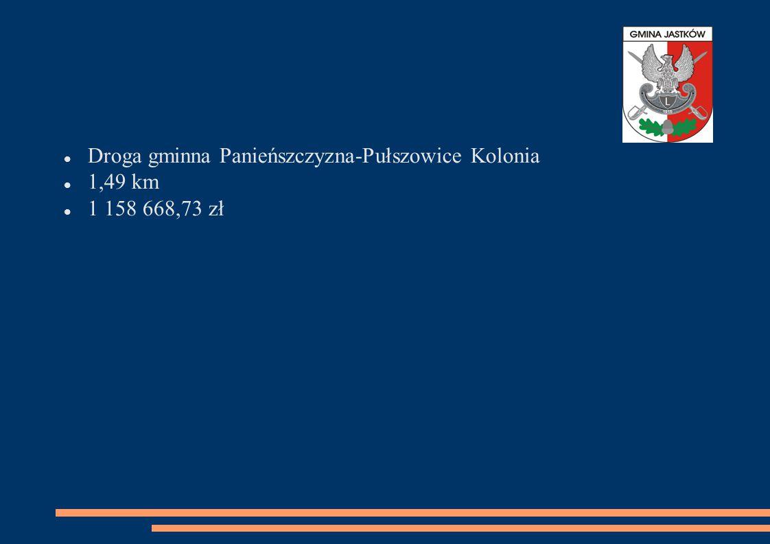 Droga gminna Panieńszczyzna-Pułszowice Kolonia