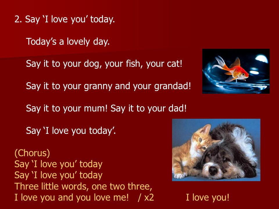 2. Say 'I love you' today. Today's a lovely day. Say it to your dog, your fish, your cat! Say it to your granny and your grandad!
