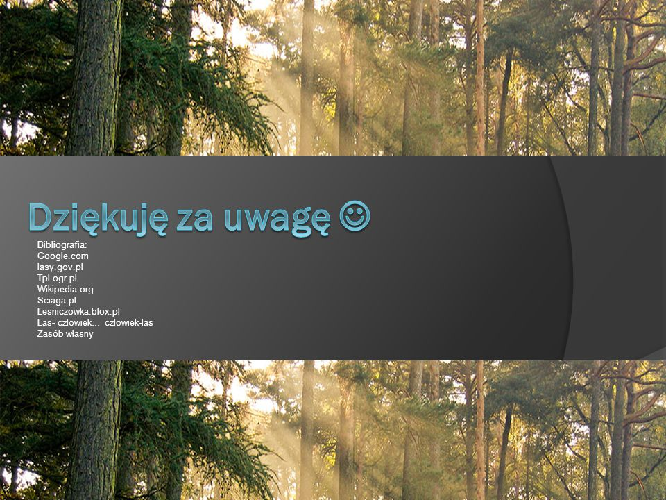 Dziękuję za uwagę  Bibliografia: Google.com lasy.gov.pl Tpl.ogr.pl