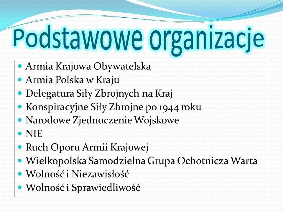 Podstawowe organizacje