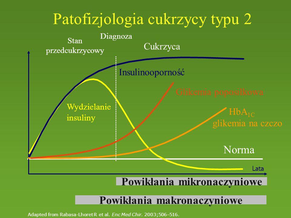 Patofizjologia cukrzycy typu 2