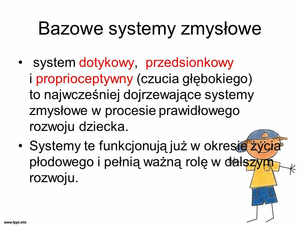 Bazowe systemy zmysłowe