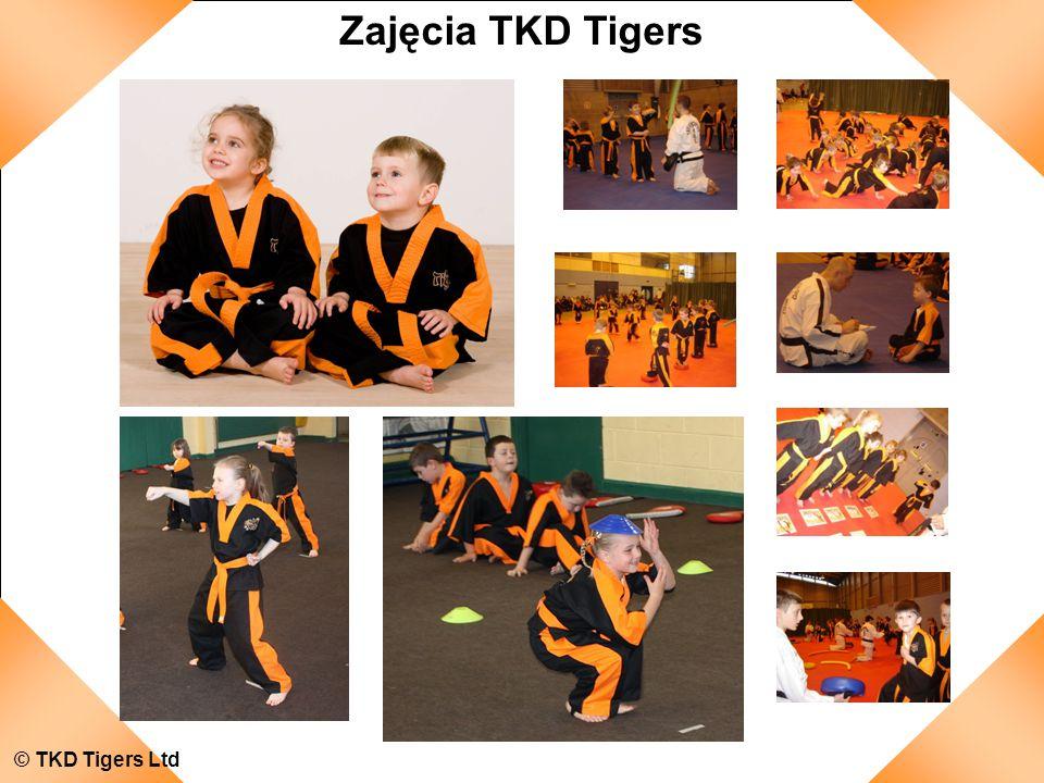 Zajęcia TKD Tigers © TKD Tigers Ltd
