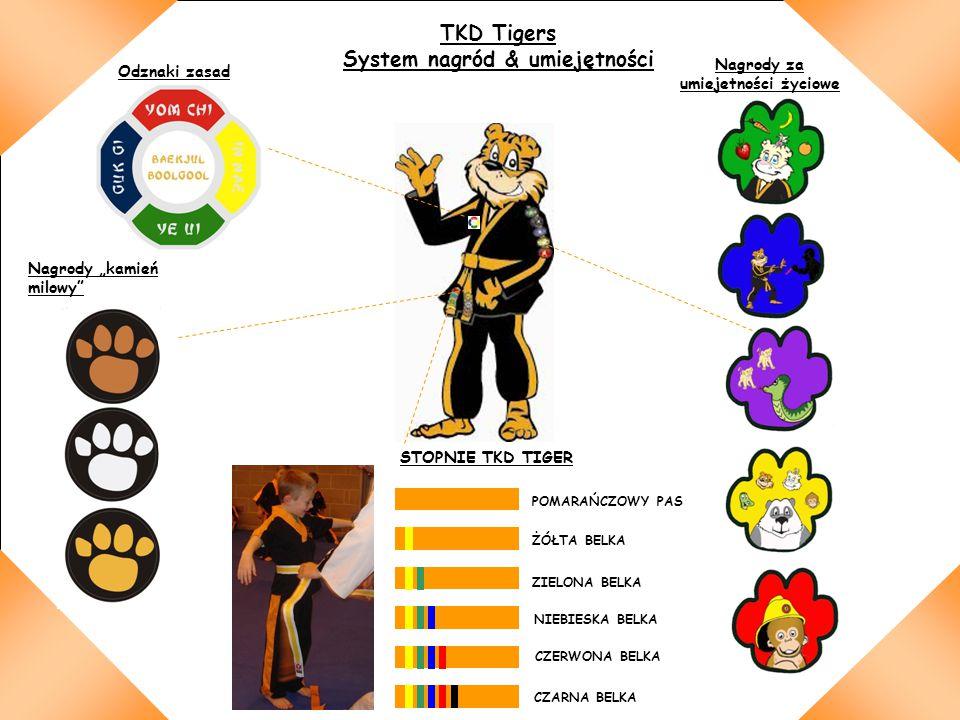 System nagród & umiejętności Nagrody za umiejetności życiowe