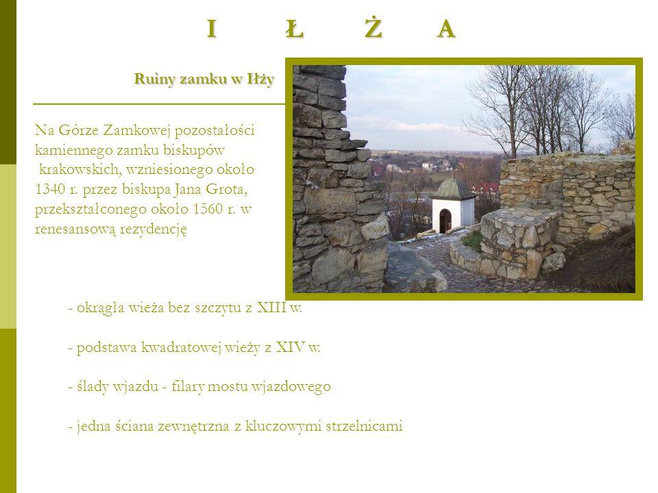 I Ł Ż A Ruiny zamku w Iłży Na Górze Zamkowej pozostałości