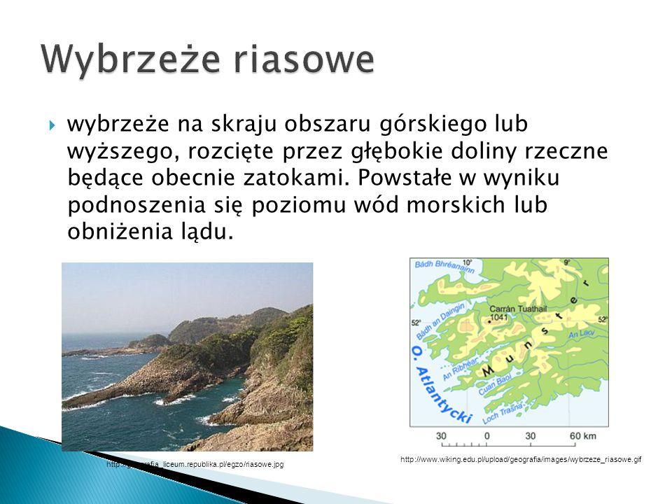 Wybrzeże riasowe