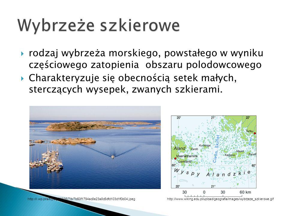 Wybrzeże szkierowe rodzaj wybrzeża morskiego, powstałego w wyniku częściowego zatopienia obszaru polodowcowego.