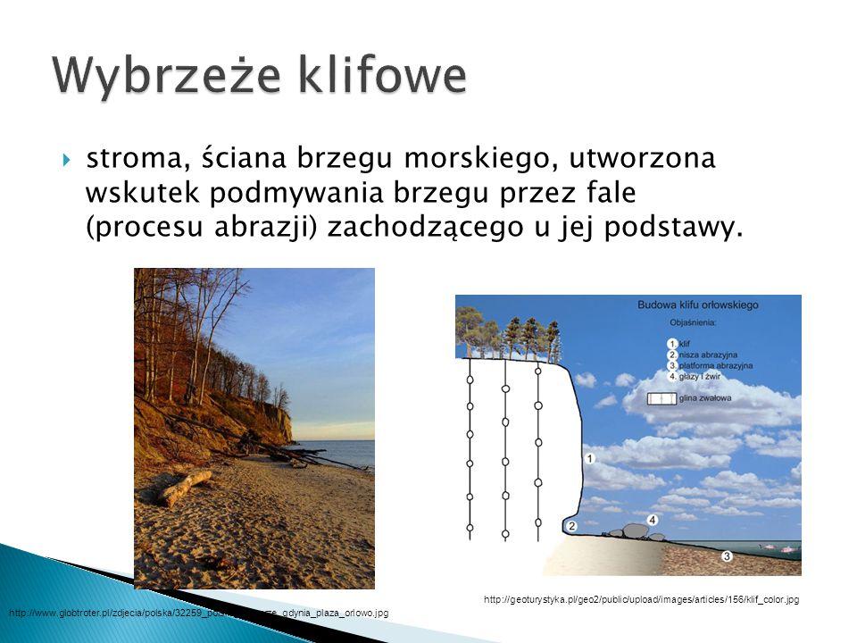 Wybrzeże klifowe stroma, ściana brzegu morskiego, utworzona wskutek podmywania brzegu przez fale (procesu abrazji) zachodzącego u jej podstawy.