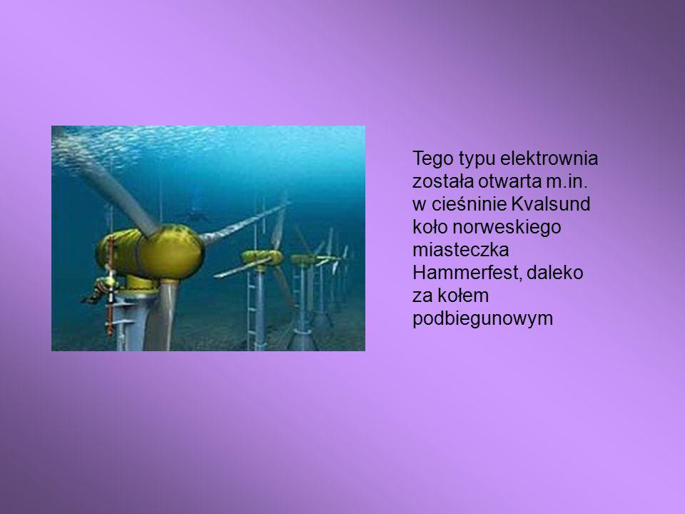 Tego typu elektrownia została otwarta m. in