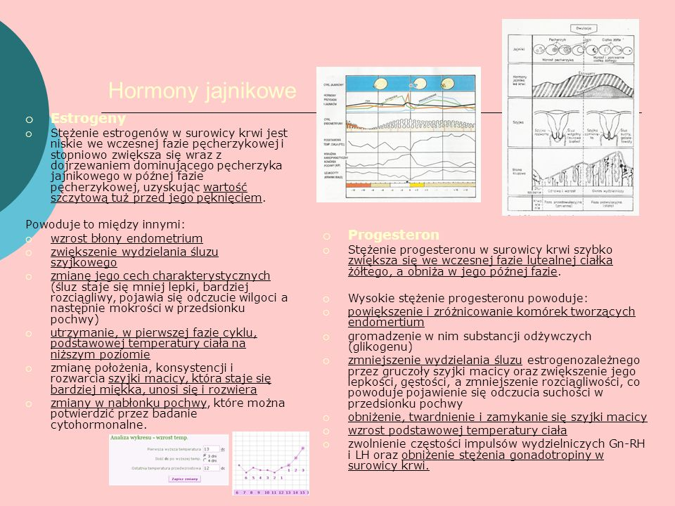 Hormony jajnikowe Estrogeny Progesteron