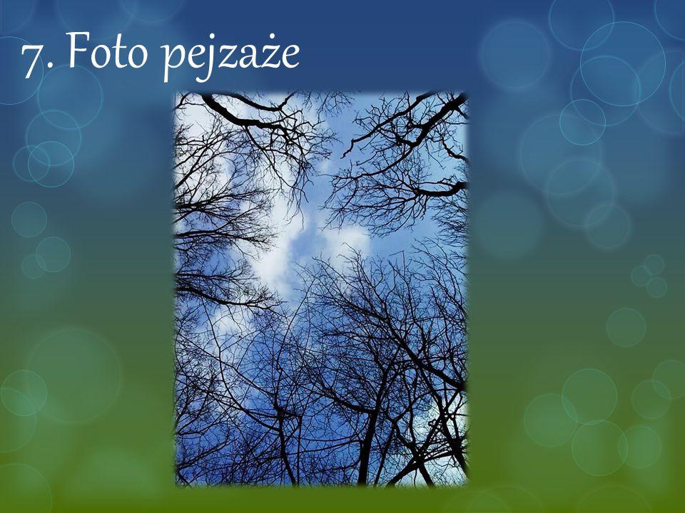 7. Foto pejzaże