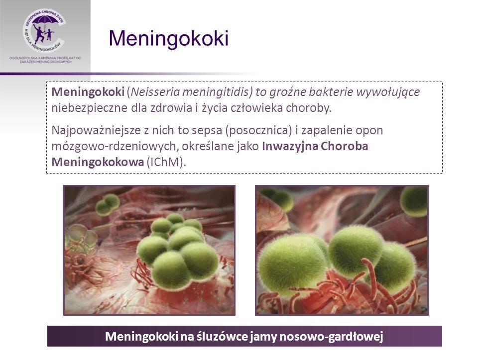 Meningokoki na śluzówce jamy nosowo-gardłowej