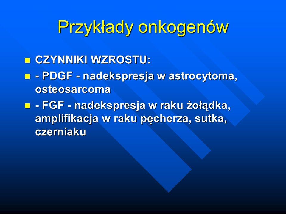 Przykłady onkogenów CZYNNIKI WZROSTU:
