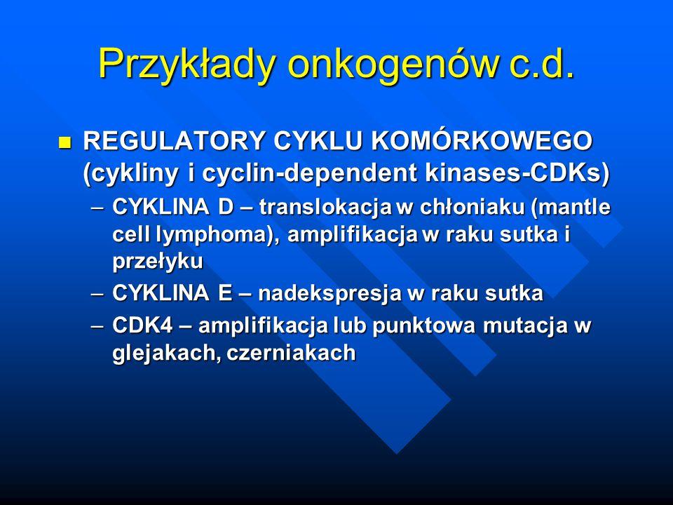 Przykłady onkogenów c.d.