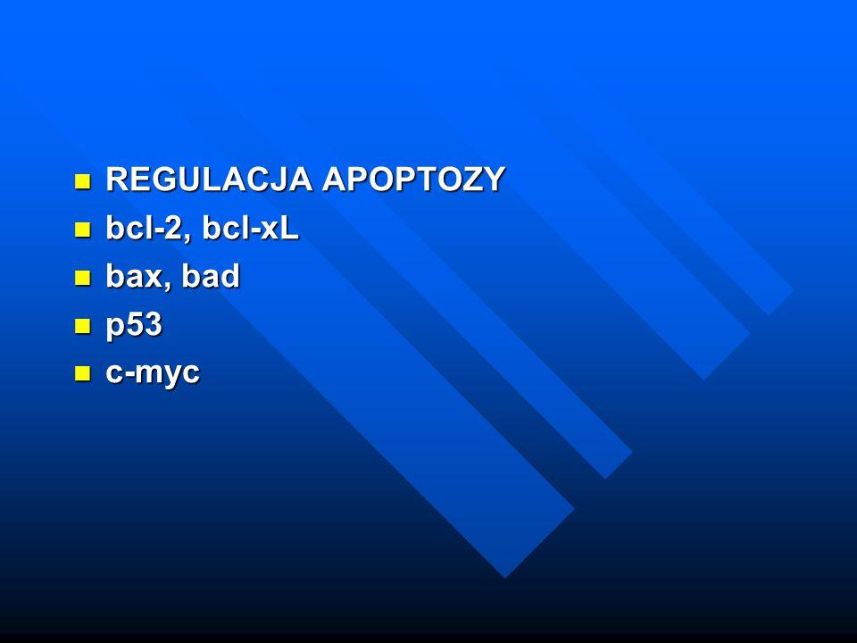 REGULACJA APOPTOZY bcl-2, bcl-xL bax, bad p53 c-myc