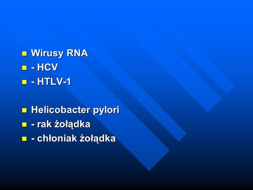 Wirusy RNA - HCV - HTLV-1 Helicobacter pylori - rak żołądka - chłoniak żołądka