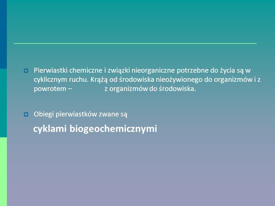 cyklami biogeochemicznymi