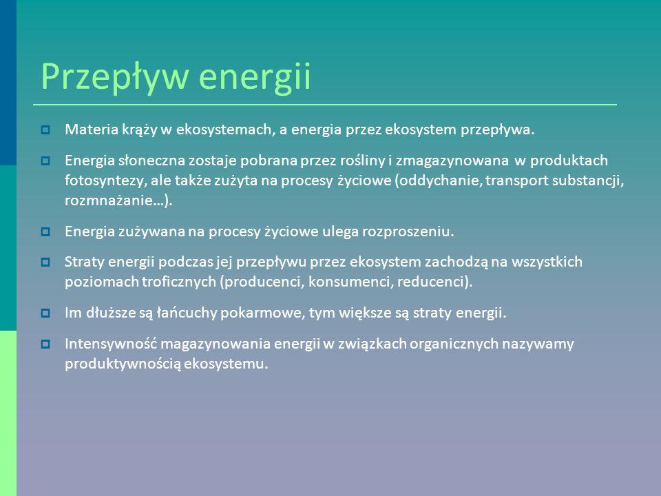 Przepływ energii Materia krąży w ekosystemach, a energia przez ekosystem przepływa.
