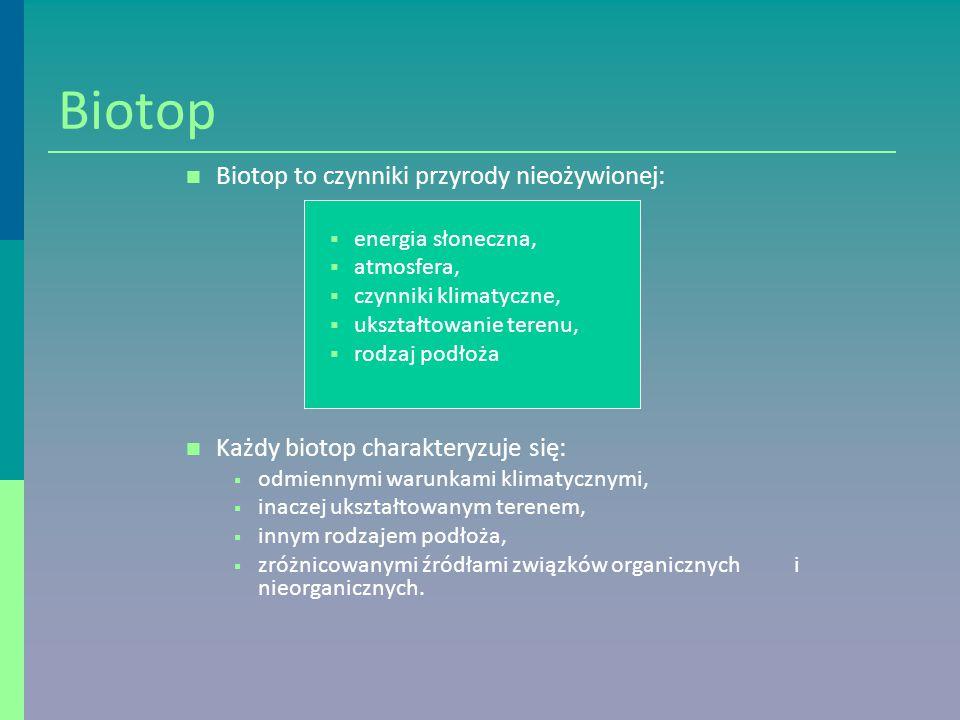 Biotop Biotop to czynniki przyrody nieożywionej: