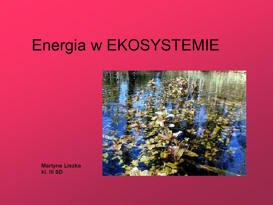 Energia w EKOSYSTEMIE Martyna Liszka kl. III SD