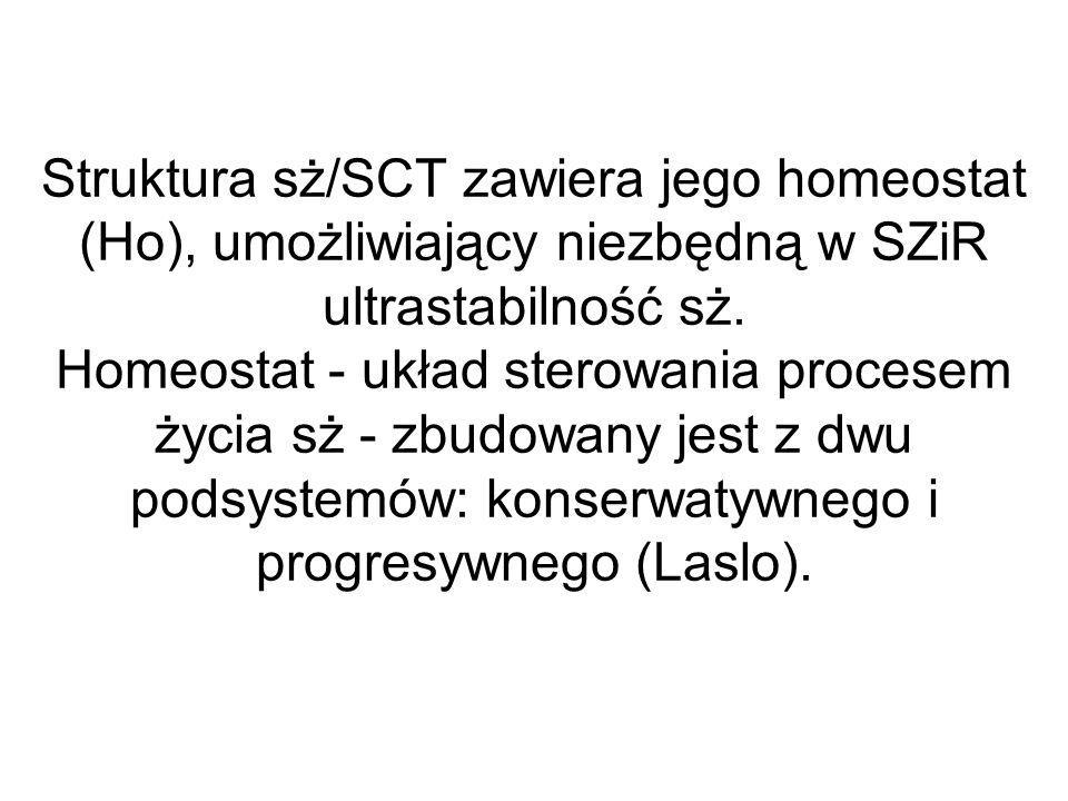 Struktura sż/SCT zawiera jego homeostat (Ho), umożliwiający niezbędną w SZiR ultrastabilność sż.