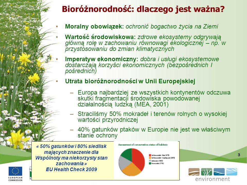 Bioróżnorodność: dlaczego jest ważna