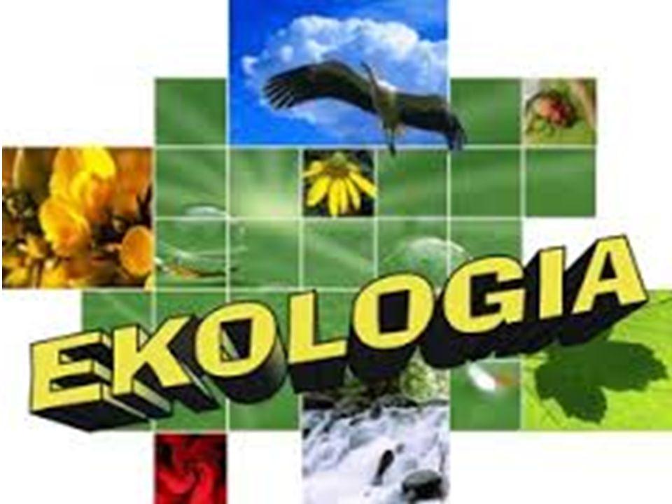 Ekologia Na codzień