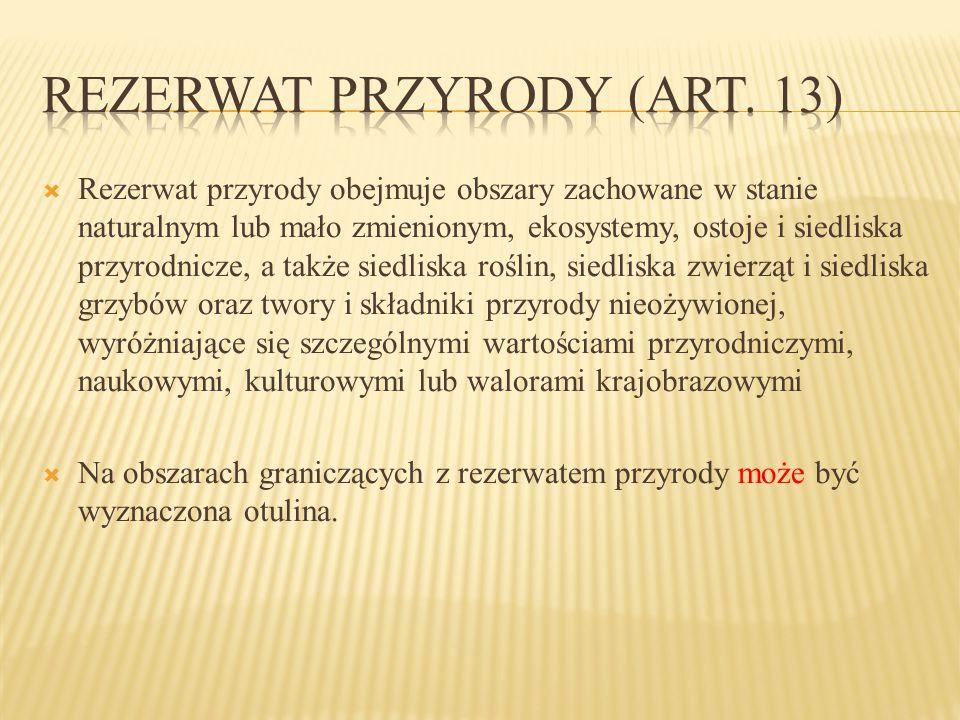 Rezerwat przyrody (art. 13)