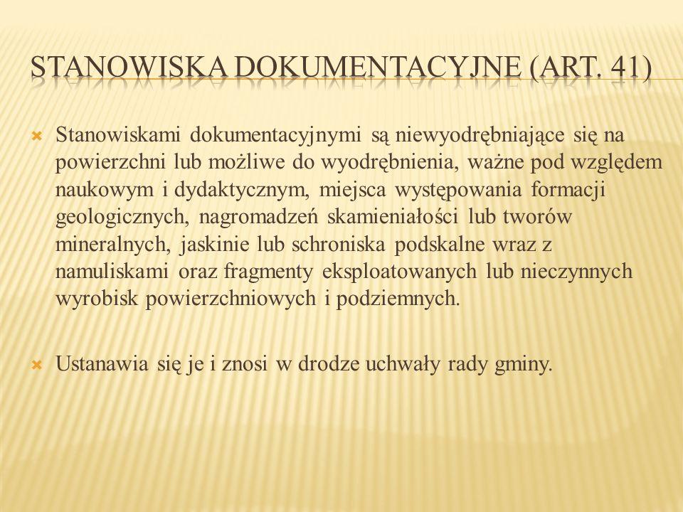 Stanowiska dokumentacyjne (art. 41)