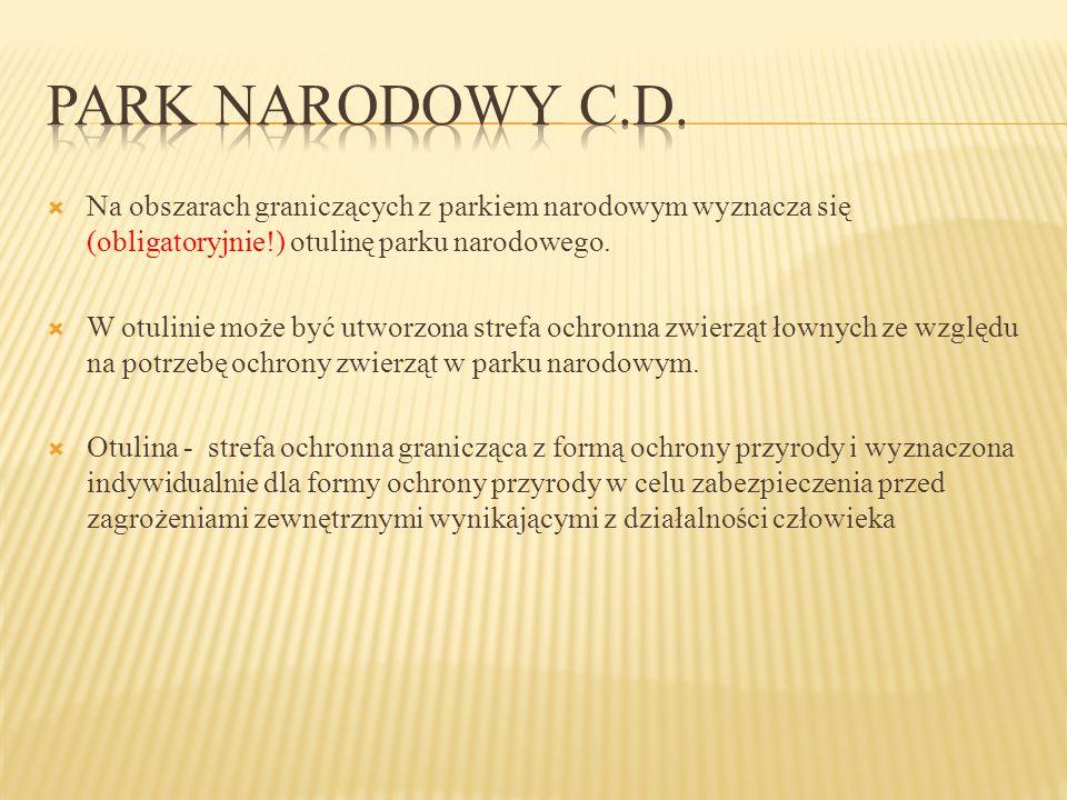 Park narodowy c.d. Na obszarach graniczących z parkiem narodowym wyznacza się (obligatoryjnie!) otulinę parku narodowego.