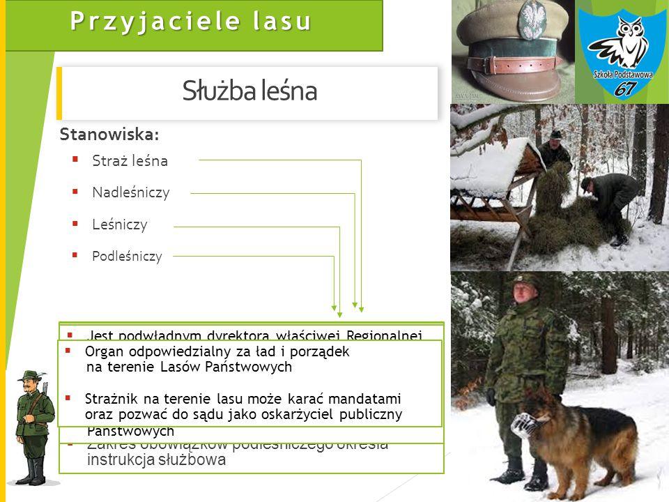 Służba leśna Stanowiska: Straż leśna Nadleśniczy Leśniczy