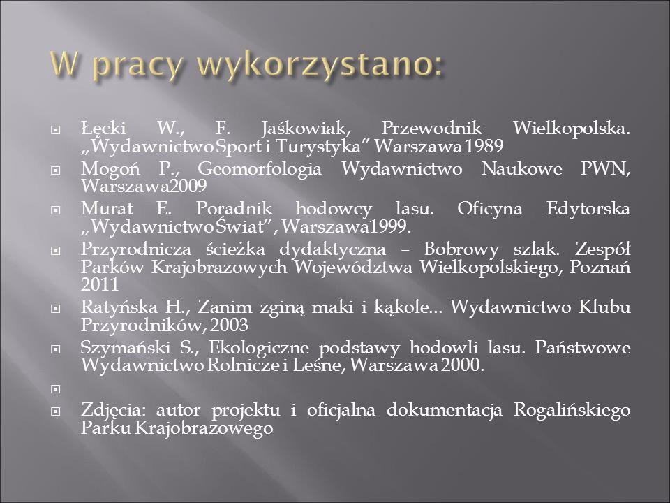 """W pracy wykorzystano: Łęcki W., F. Jaśkowiak, Przewodnik Wielkopolska. """"Wydawnictwo Sport i Turystyka Warszawa 1989."""