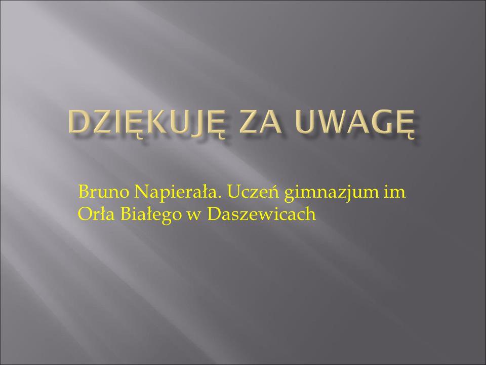 Bruno Napierała. Uczeń gimnazjum im Orła Białego w Daszewicach
