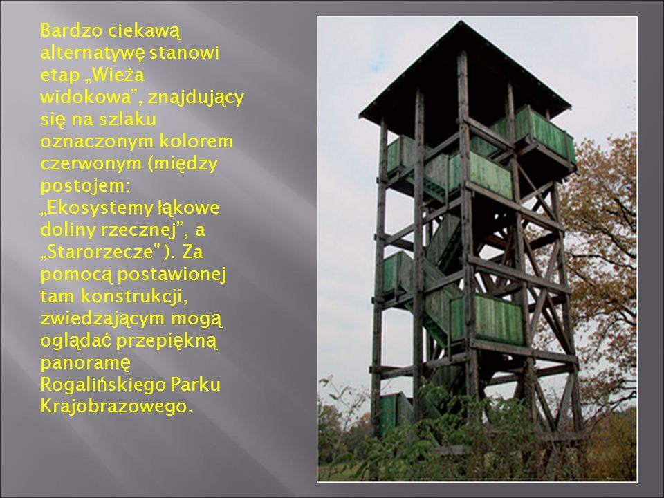 """Bardzo ciekawą alternatywę stanowi etap """"Wieża widokowa , znajdujący się na szlaku oznaczonym kolorem czerwonym (między postojem: """"Ekosystemy łąkowe doliny rzecznej , a """"Starorzecze )."""