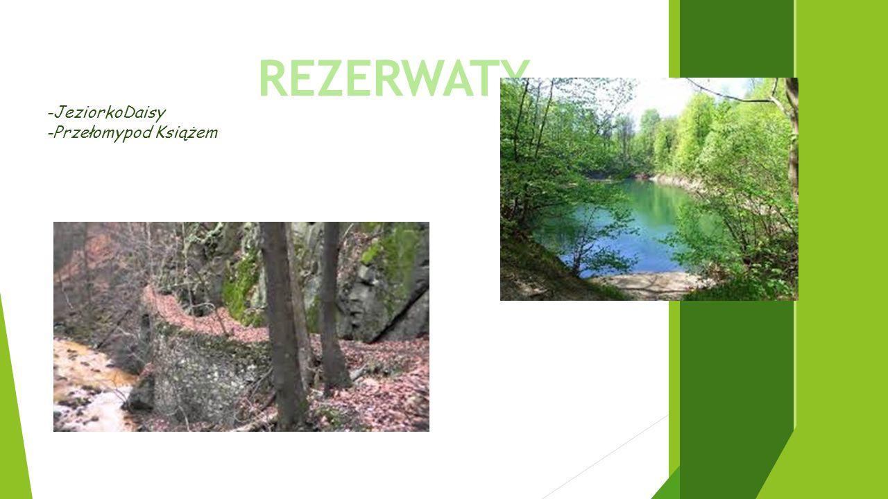 REZERWATY -JeziorkoDaisy -Przełomypod Książem