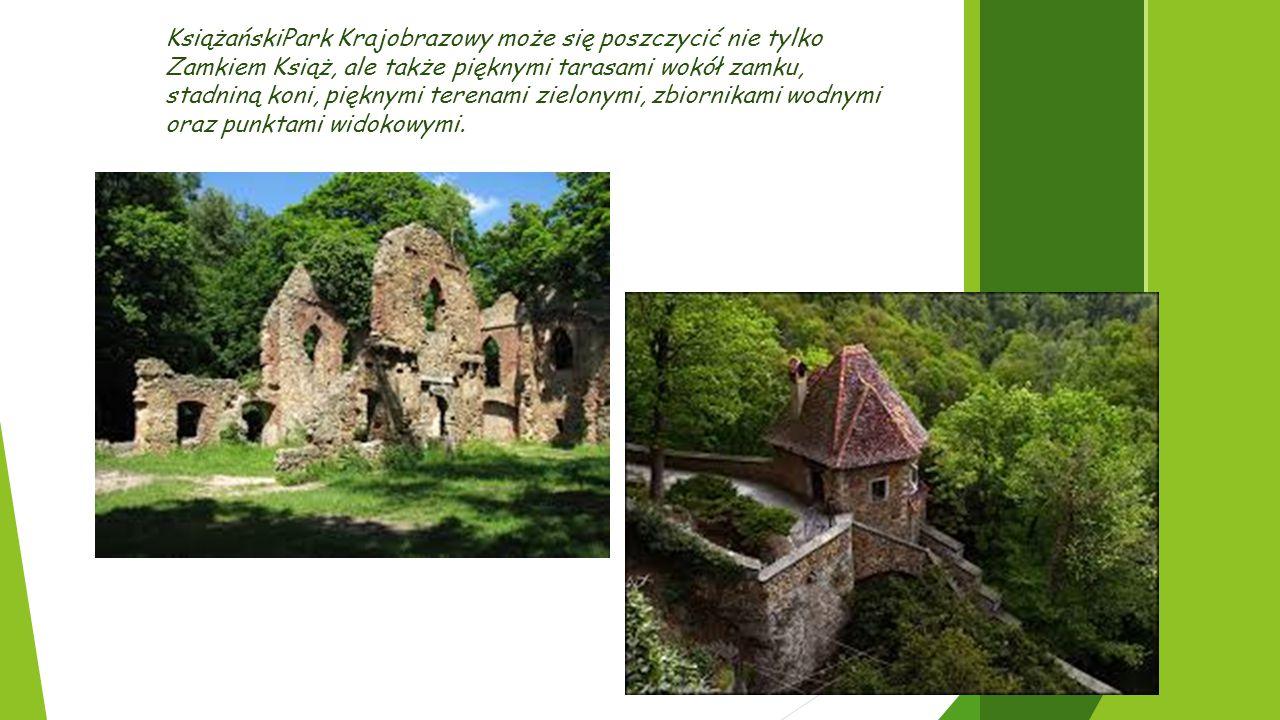 KsiążańskiPark Krajobrazowy może się poszczycić nie tylko Zamkiem Książ, ale także pięknymi tarasami wokół zamku, stadniną koni, pięknymi terenami zielonymi, zbiornikami wodnymi oraz punktami widokowymi.