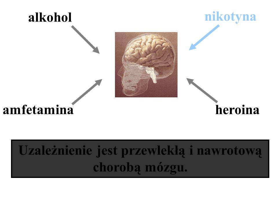 Uzależnienie jest przewlekłą i nawrotową chorobą mózgu.